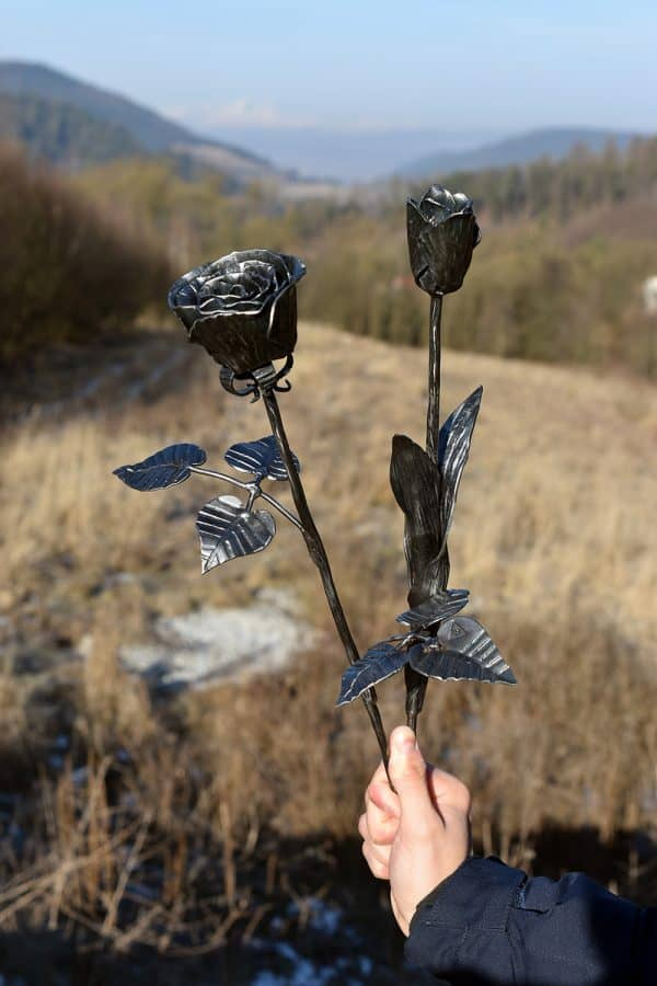 Kovaná ruža so stonkou, dvomi vetvami a šiestimi lístkami a kovaný tulipán s lístkom uchopené v ruke v prírode